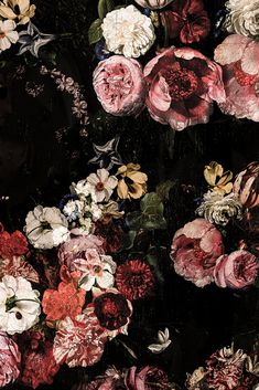The sleeping Beauty Roses Vines Mural - JASS London
