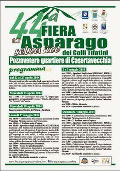Campania Eventi e Sagre: Fiera della'Asparago selvatico di Montagna a Pozzovetere 2014