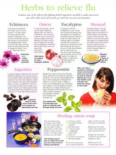 Herbs to relieve flu