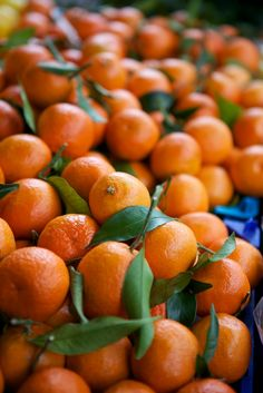 8 Dec: Colourful Christmas clementines at Borough Market