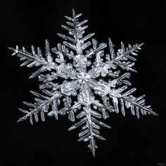 A photographer's scientific approach to shooting snowflakes reveals stunning geometric variety — Quartz Schnee Tattoo, Snowflake Photography, Winter Photography, Snow Tattoo, Snowflake Pictures, Crystal Snowflakes, Ice Crystals, Winter Light, Winter Snow
