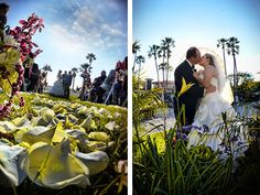 White rose petals line the wedding aisle, and palm trees and vibrant foliage embellish the shore. Wedding Ceremony and Reception Venue: Embassy Suites Mandalay Beach Resort   Wedding Photographer: Alex Neumann Photography
