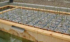 NATURAL POOLS: A close up of a DIY kit for the regeneration area/rock filtration area from www.clear-water-revival.com