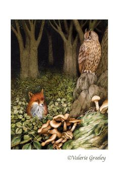 Beautiful Woodland illustration: Valerie Greeley (Brown is the Owl) Art And Illustration, Woodland Illustration, Photo D Art, Owl Print, Fox Art, Woodland Creatures, Whimsical Art, Illustrators, Fantasy Art