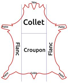 Apprendre la maroquinerie et le travail du cuir, Découpe peau ou cuir, les différentes parties d'une peau, prétant