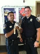 """""""Baltimore police officers save cat from storm drain""""Posted June 19, 2013 Two Baltimore police officers are credited with saving the life of a cat who had become trapped in a storm drain.  The rescue took place on June 15 when Baltimore police officers Badgujar and Downey heard the desperate cries of the trapped kitten coming from a storm drain. These two officers went to great lengths (and depths) to rescue the emaciated cat from her perch as she clung to an underground ladder."""