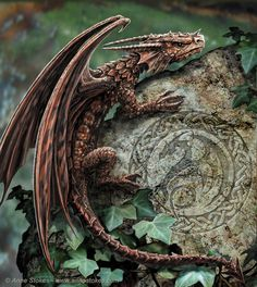 If there be dragons ....
