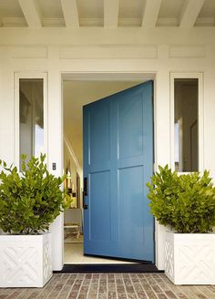 love this door style and the two plants on either side