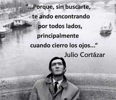 The Nicest Pictures: Julio Cortázar