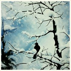 Acryllic on canvas..