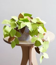 My little paper heart leaf philodendron tutorial is up on @houselarsbuilt's blog today. Yes! Paper plants make great pets.