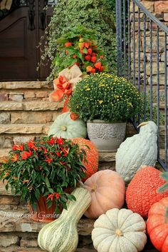 Spilling Down the Stairway - A colorful medley of pumpkins, gourds and mums spilling down the staircase. Check the local farmers markets or pumpkin patches. ~ from The Graceful Gardener Autumn Garden, Autumn Home, Thanksgiving Decorations, Autumn Decorations, House Decorations, Fall Harvest, Harvest Time, Fall Pumpkins, Autumn Inspiration