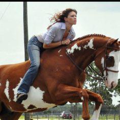 American Splendor, Bareback Riding, Cowgirl Hats, Horse Pictures, Bellisima, Equestrian, Horses, Rock, Animals