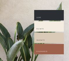 art deco home decor Colour Pallette, Colour Schemes, Color Combos, Black Color Palette, Earthy Color Palette, Color Trends, Ideal Logo, Web Design, Photoshop