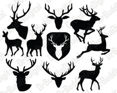 Deer SVG Collection - Deer DXF - Deer Clipart - Svg Files for Silhouette Cameo or Cricut by DrBuddhaDigital on Etsy