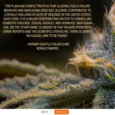 The more you know about the positive effects of ‪#‎cannabis‬ compared to public perception, the more frustrated you become. Like & Share to spread awareness! ‪#‎MyDx‬ ‪#‎LivePure‬ ‪#‎Marijuana‬ ‪#‎Analyzer‬ ‪#‎Technology‬ ‪#‎MMJ‬