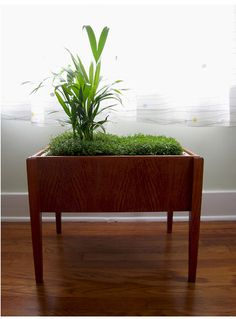 indoor plant side table
