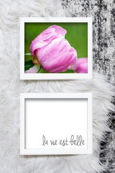"This printable peony and ""la vie est belle"" typography art is a wonderful touch for any home decor. Just download and print.  #pinkpeonies #flowerphotography #pritnableart Mermaid Invitations, Birthday Invitations, Pink Peonies, Peony, Rgb Color Space, Photographs, Photos, Holiday Gift Tags, Typography Art"