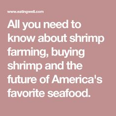 All you need to know about shrimp farming, buying shrimp and the future of America's favorite seafood.