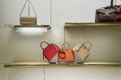 Louis Vuitton | WORKS - CURIOSITY - キュリオシティ -