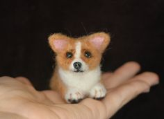 Needle Felted Corgi Puppy by amber-rose-creations.deviantart.com