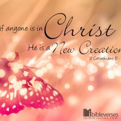 We are New in Christ