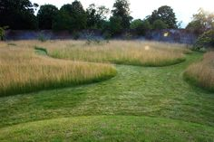 private garden | oxfordshire ~ dan pearson studio....don't mind the look. Mowed paths still show some forethought and can't beat the reduction in maintenance time :)