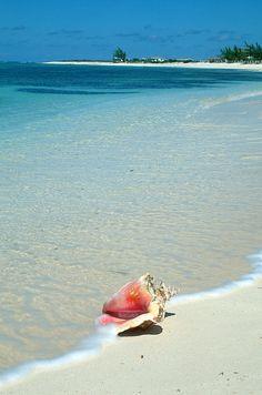 Caraibi spiaggia Press Tours http://blog.presstours.it/2013/02/26/palm-island-grenadine-isola-privata-resort-palm-island/#