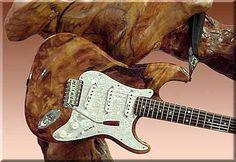 Custom Guitars and Pickups