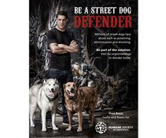 Sons of Anarchy Star Theo Rossi Launches Campaign to Protect Street Dogs : The Humane Society of the United States