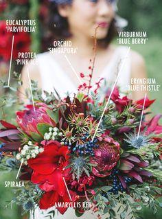 Floral Bouquet Recipes by Colour. This warm festive red one has eucalyptus, protea, singapore orchid, viburnum, eryngium blue thistle, spiraea and amaryllis
