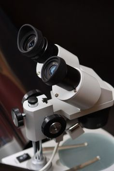 Home microscope projects