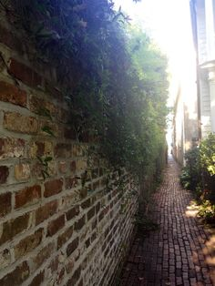 Stoll's Alley, South of Broad, Charleston, SC #stollsalley #charleston #southofbroad #adventures