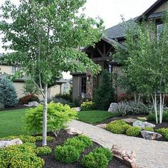 40 Comfy Farmhouse landscaping ideas for the front yard Farmhouse Landscaping, Home Landscaping, Landscaping With Rocks, Front Yard Landscaping, Landscaping Software, House Landscape, Garden Landscape Design, Front Yard Design, Outdoor Gardens