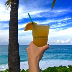 Cheers from paradise! #TheCoveLife