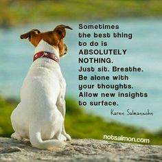 Sometimes the best thing to do is ABSOLUTELY NOTHING. Just sit. Be alone with your thoughts. All I w new insights to surface - Karen Salmansohn Karen Salmansohn, Power Of Meditation, Things To Do, Good Things, Alone Time, Just Breathe, The Kingdom Of God, Animal Quotes, Quotes Quotes