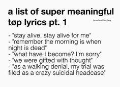 Meaningful (Extra meaningful) twenty one pilots lyrics.
