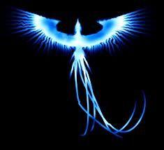 Fênix - uma ave mítica, figura da mitologia grega que simboliza o fogo, o sol, a vida, a felicidade, a renovação, a ressurreição, a imortalidade, a força, a longevidade.
