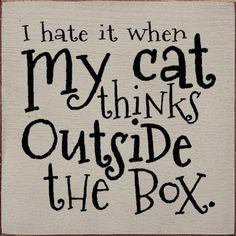 Sawdust City LLC - I hate it when my cat thinks outside the box., $11.00 (http://www.sawdustcityllc.com/i-hate-it-when-my-cat-thinks-outside-the-box/)