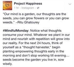 Wise Words Word Of Wisdom