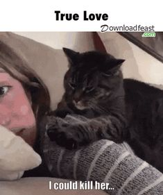 True Love Right? See this cat in action here http://pewpaw.com/video-cleaning-with-cute-kittens/