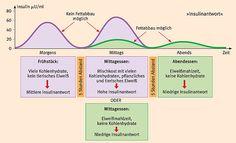 Insulin Trennkost nach Schlank im Schlaf von Dr. Detlef Pape