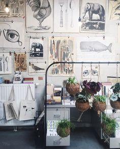 Amazing shop in #maastricht #festen