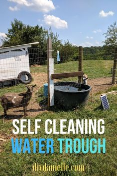 to Keep a Water Trough Clean for Livestock How to setup your water trough or stock tank so that it stays clear and clean. How to setup your water trough or stock tank so that it stays clear and clean. Raising Farm Animals, Raising Goats, Goat Farming, Livestock Farming, Livestock Water Tanks, Duck Farming, Goat Shelter, Goat Pen, Goat House