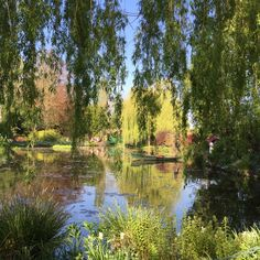 pacifique — Monet's Garden: Giverny, France Mother Earth, Mother Nature, Monet Garden Giverny, Beautiful World, Beautiful Places, Giverny France, Nature Aesthetic, Plein Air, Aesthetic Pictures