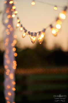 Would be great for wedding or party outside, the lights give the party a fun, whimsical feel!!