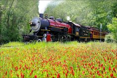 Texas State Railroad in Palestine, Texas