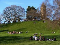 Brandon Hill, Bristol by nicksarebi Days Out, Bristol, Dolores Park, Things To Do, Bath, Street, Kids, Travel, Things To Make