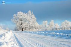 paisajes invernales fotos