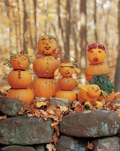 Create your own gourd family